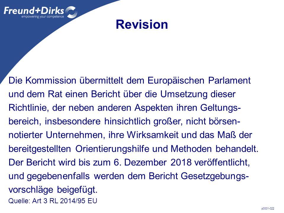 p0001-022 Die Kommission übermittelt dem Europäischen Parlament und dem Rat einen Bericht über die Umsetzung dieser Richtlinie, der neben anderen Aspekten ihren Geltungs- bereich, insbesondere hinsichtlich großer, nicht börsen- notierter Unternehmen, ihre Wirksamkeit und das Maß der bereitgestellten Orientierungshilfe und Methoden behandelt.