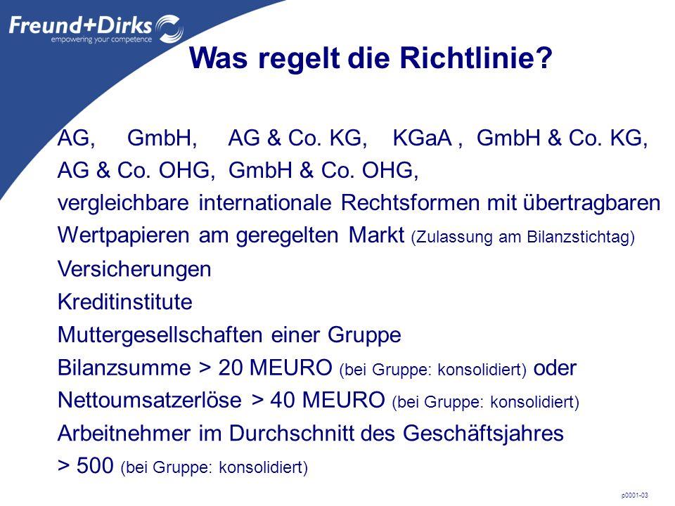 p0001-03 Was regelt die Richtlinie. AG, GmbH, AG & Co.
