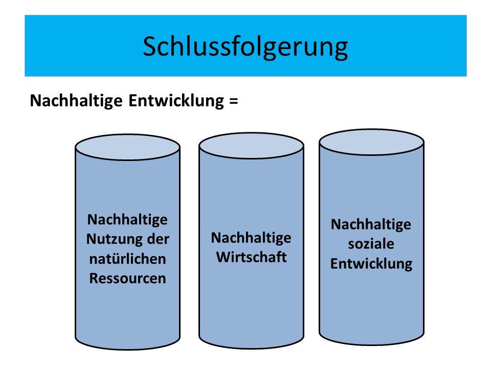 Schlussfolgerung Nachhaltige Entwicklung = Nachhaltige Nutzung der natürlichen Ressourcen Nachhaltige Wirtschaft Nachhaltige soziale Entwicklung