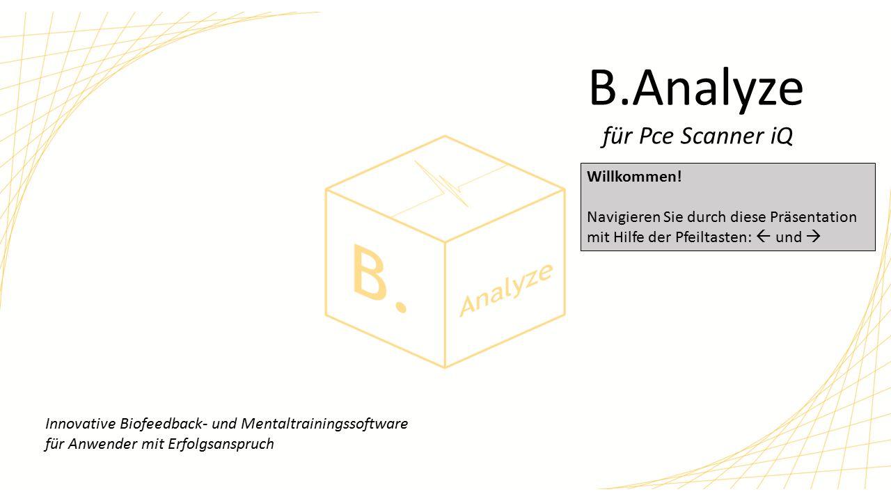 Was ist B.Analyze.
