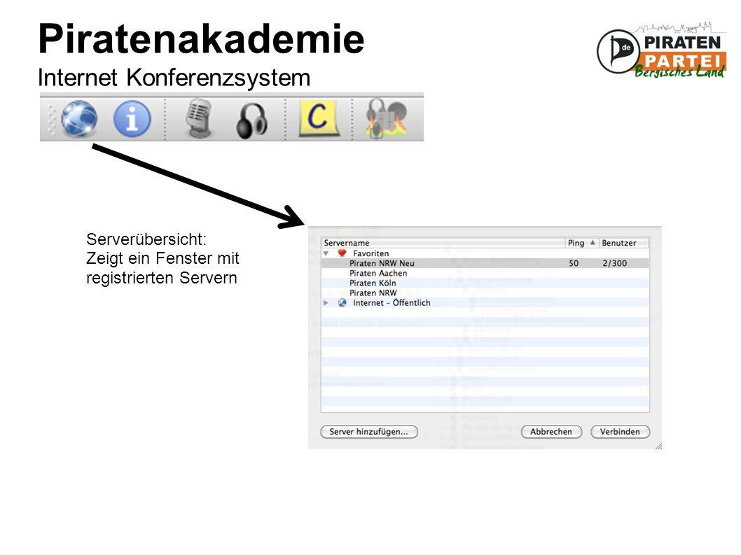 Piratenakademie Internet Konferenzsystem Serverübersicht: Zeigt ein Fenster mit registrierten Servern