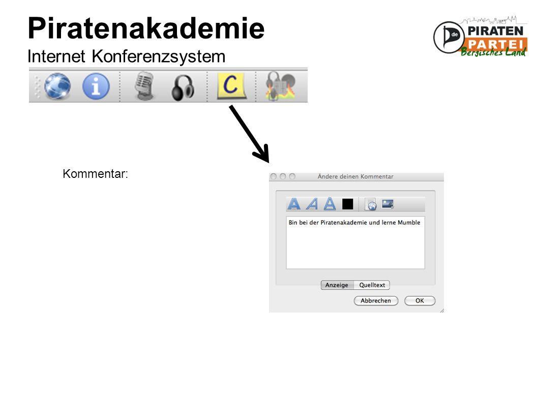 Piratenakademie Internet Konferenzsystem Kommentar: