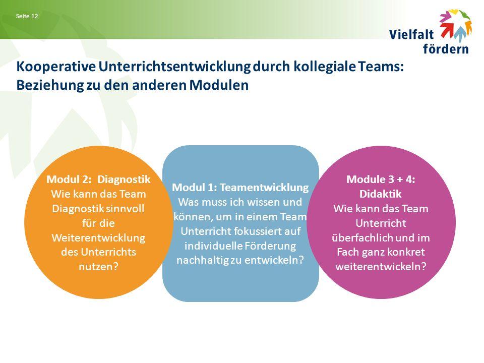 Seite 12 Kooperative Unterrichtsentwicklung durch kollegiale Teams: Beziehung zu den anderen Modulen Modul 1: Teamentwicklung Was muss ich wissen und können, um in einem Team Unterricht fokussiert auf individuelle Förderung nachhaltig zu entwickeln.