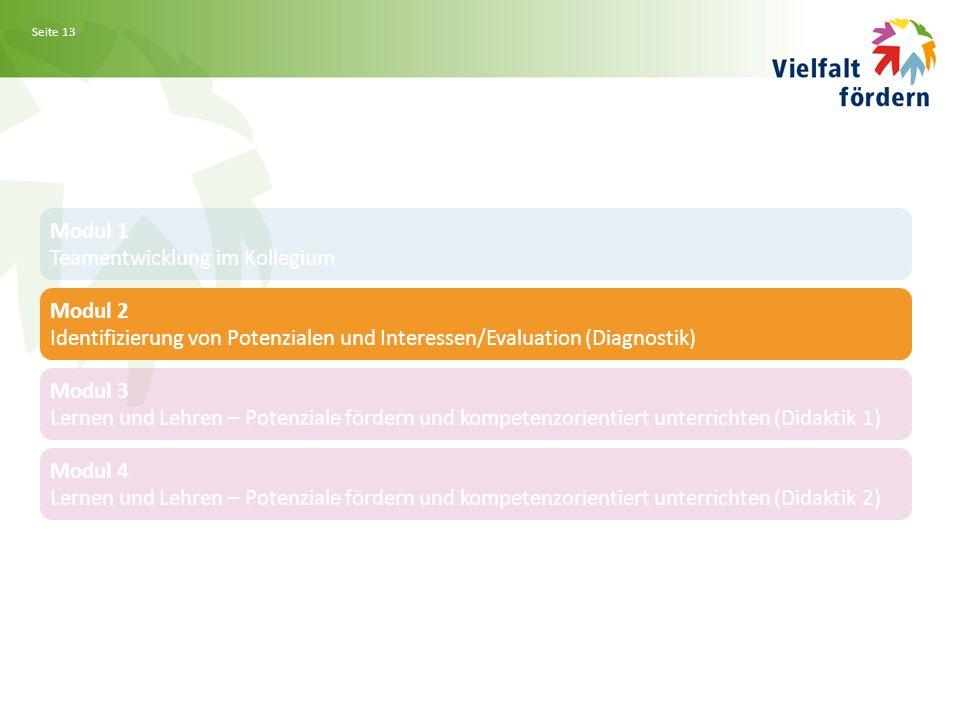 Seite 13 Modul 1 Teamentwicklung im Kollegium Modul 2 Identifizierung von Potenzialen und Interessen/Evaluation (Diagnostik) Modul 3 Lernen und Lehren – Potenziale fördern und kompetenzorientiert unterrichten (Didaktik 1) Modul 4 Lernen und Lehren – Potenziale fördern und kompetenzorientiert unterrichten (Didaktik 2)