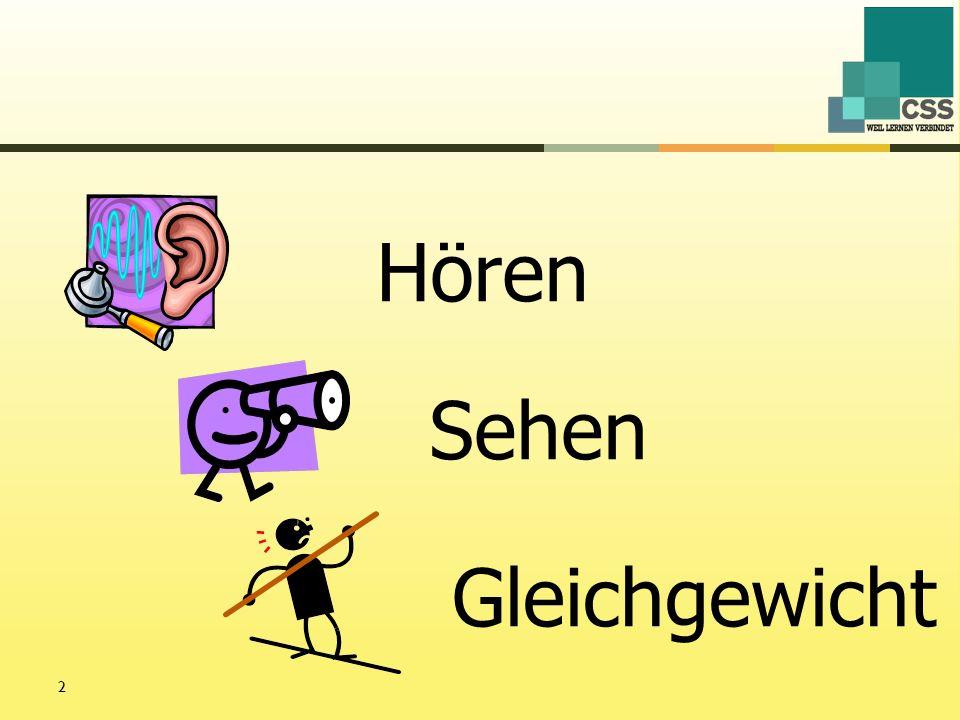 3 Gibt es einen Zusammenhang zwischen Sinnesbeeinträchtigungen des Sehens, Hörens, Gleichgewichts und den Schulleistungen.