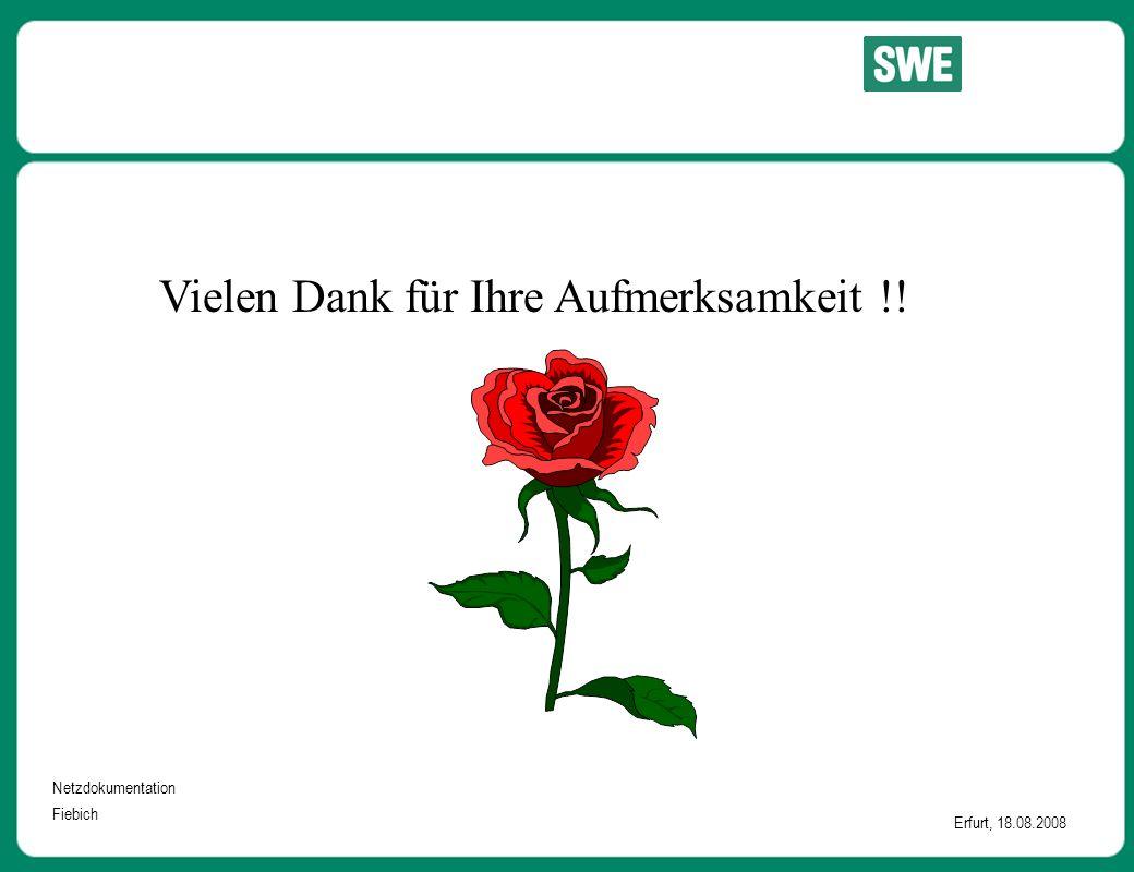 Netzdokumentation Fiebich Erfurt, 18.08.2008 Vielen Dank für Ihre Aufmerksamkeit !!