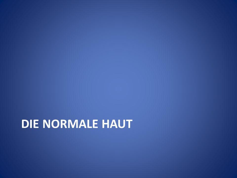 DIE NORMALE HAUT