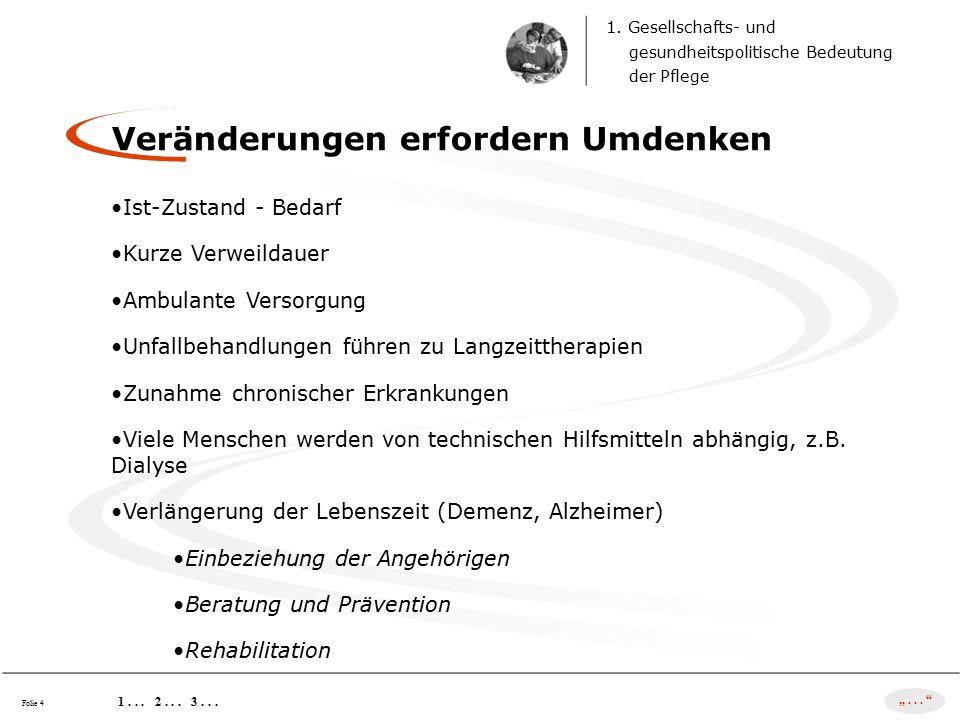 2.Geschichtliche Entwicklung der Pflege vom 19.