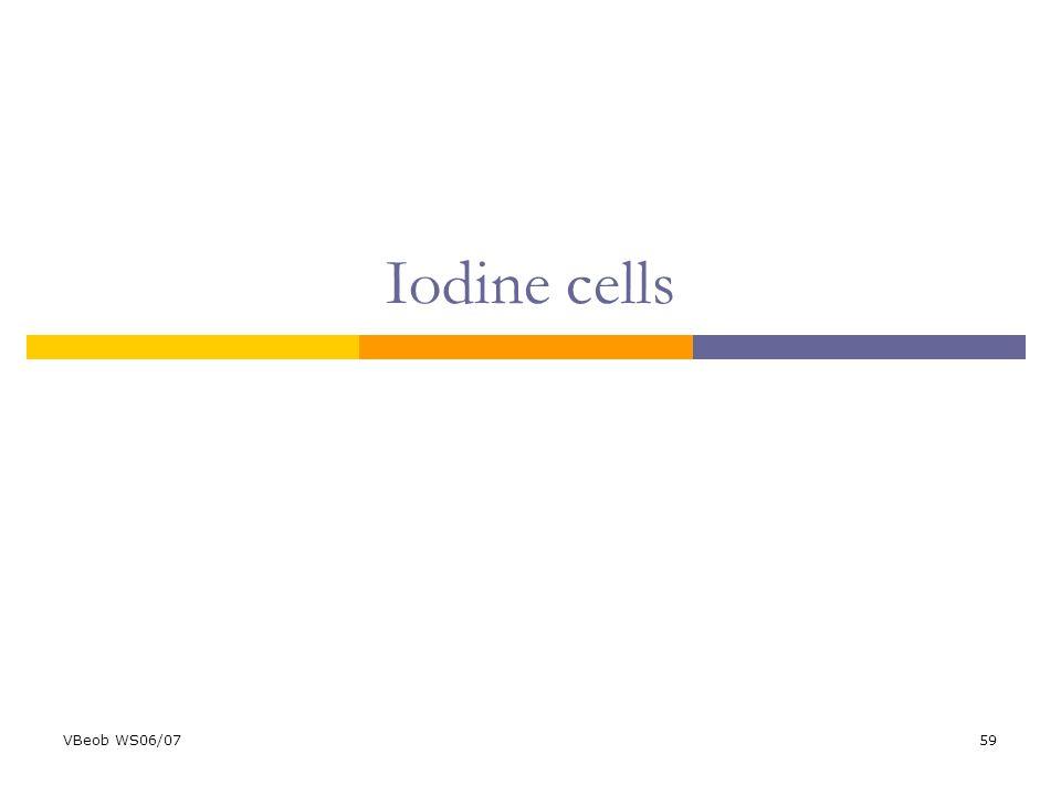 VBeob WS06/0759 Iodine cells