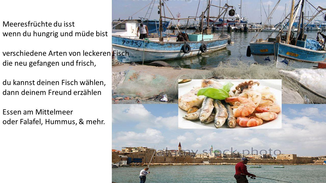Meeresfrüchte du isst wenn du hungrig und müde bist verschiedene Arten von leckeren Fisch die neu gefangen und frisch, du kannst deinen Fisch wählen,