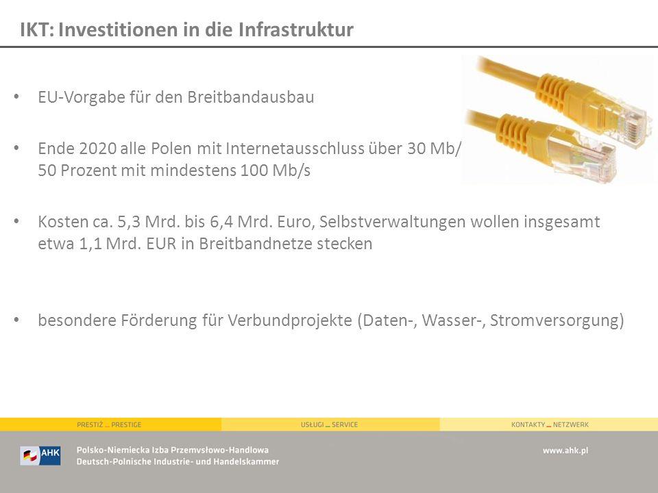 EU-Vorgabe für den Breitbandausbau Ende 2020 alle Polen mit Internetausschluss über 30 Mb/s, 50 Prozent mit mindestens 100 Mb/s Kosten ca. 5,3 Mrd. bi
