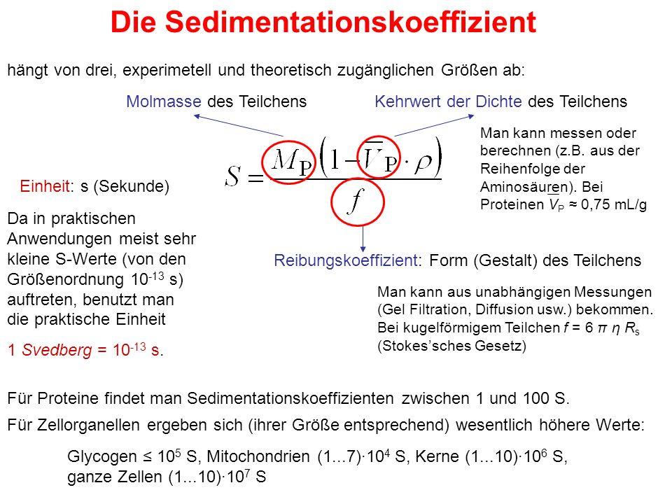 Die Sedimentationskoeffizient hängt von drei, experimetell und theoretisch zugänglichen Größen ab: Molmasse des TeilchensKehrwert der Dichte des Teilchens Reibungskoeffizient: Form (Gestalt) des Teilchens Einheit: s (Sekunde) Da in praktischen Anwendungen meist sehr kleine S-Werte (von den Größenordnung 10 -13 s) auftreten, benutzt man die praktische Einheit 1 Svedberg = 10 -13 s.