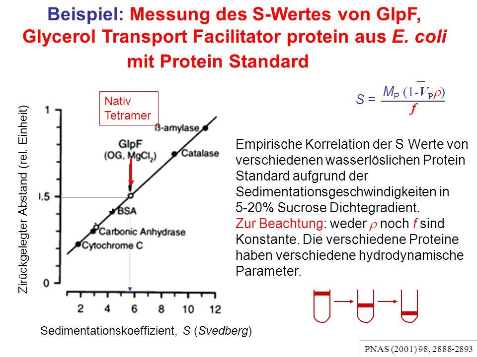 Beispiel: Messung des S-Wertes von GlpF, Glycerol Transport Facilitator protein aus E.