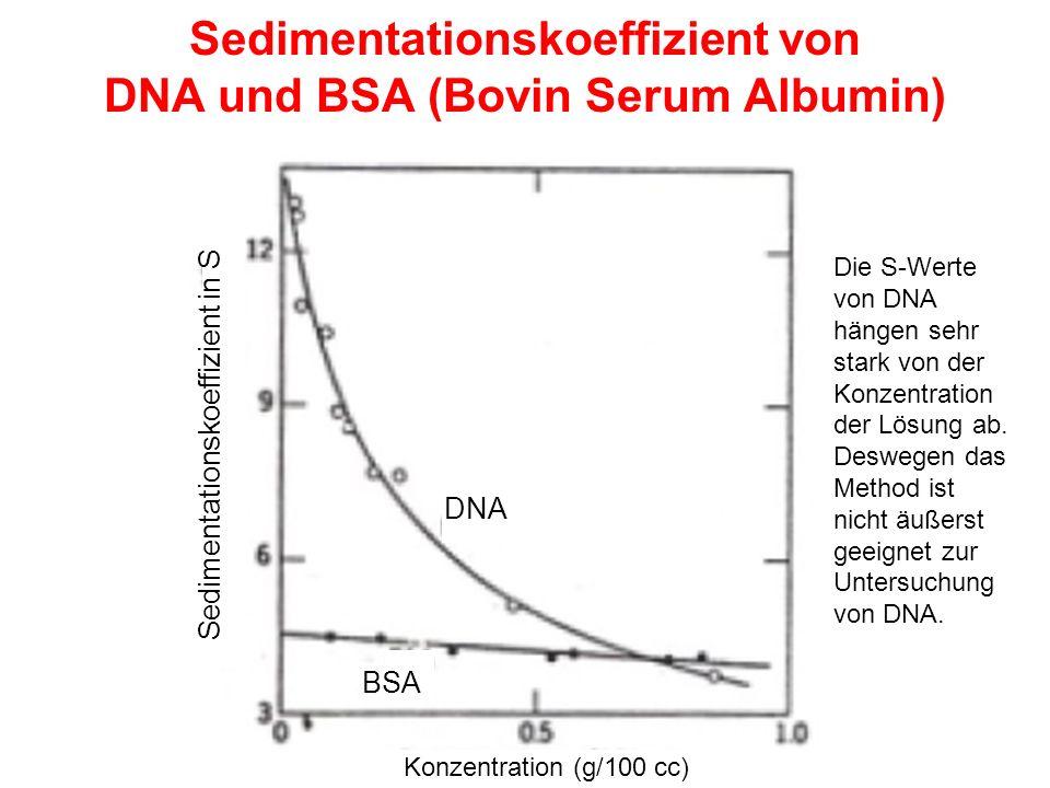 Sedimentationskoeffizient von DNA und BSA (Bovin Serum Albumin) Sedimentationskoeffizient in S DNA BSA Konzentration (g/100 cc) Die S-Werte von DNA hängen sehr stark von der Konzentration der Lösung ab.