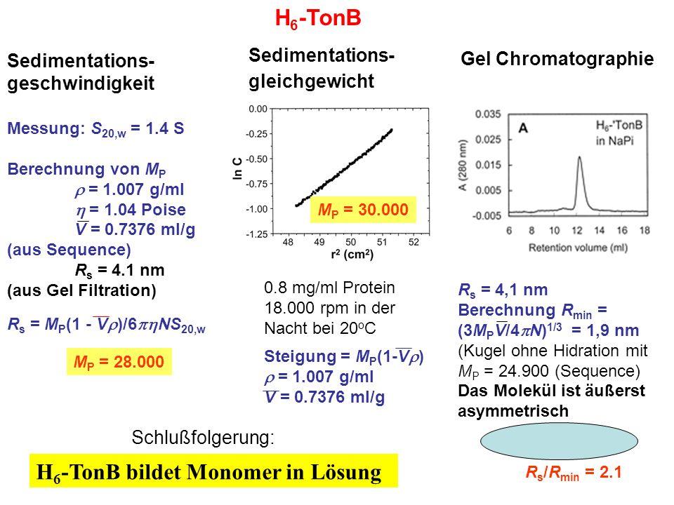Sedimentations- geschwindigkeit Messung: S 20,w = 1.4 S Berechnung von M P  = 1.007 g/ml  = 1.04 Poise V = 0.7376 ml/g (aus Sequence) R s = 4.1 nm (aus Gel Filtration) R s = M P (1 - V  )/6  NS 20,w H 6 -TonB bildet Monomer in Lösung H 6 -TonB Sedimentations- gleichgewicht M P = 30.000 M P = 28.000 0.8 mg/ml Protein 18.000 rpm in der Nacht bei 20 o C Steigung = M P (1-V  )  = 1.007 g/ml V = 0.7376 ml/g Gel Chromatographie R s = 4,1 nm Berechnung R min = (3M P V/4  N) 1/3 = 1,9 nm (Kugel ohne Hidration mit M P = 24.900 (Sequence) Das Molekül ist äußerst asymmetrisch R s /R min = 2.1 Schlußfolgerung: