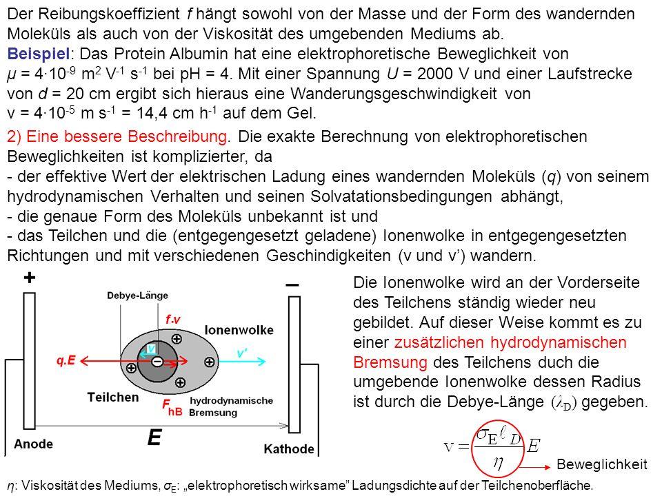 Der Reibungskoeffizient f hängt sowohl von der Masse und der Form des wandernden Moleküls als auch von der Viskosität des umgebenden Mediums ab.