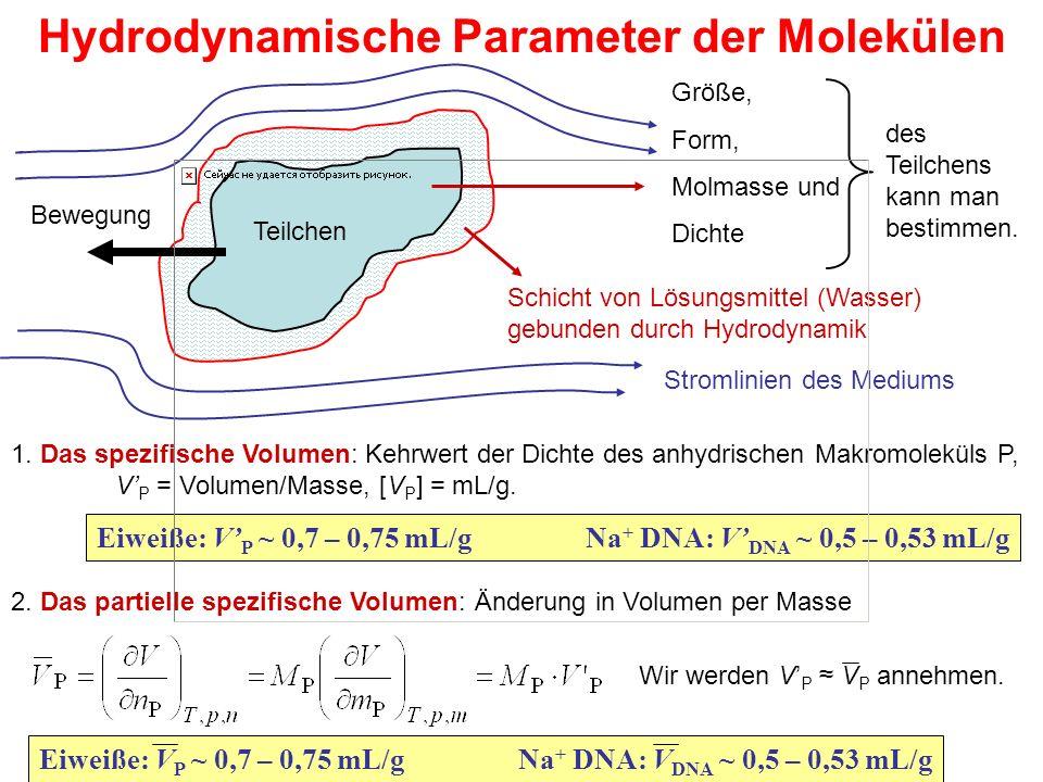 Schicht von Lösungsmittel (Wasser) gebunden durch Hydrodynamik Hydrodynamische Parameter der Molekülen Größe, Form, Molmasse und Dichte des Teilchens kann man bestimmen.