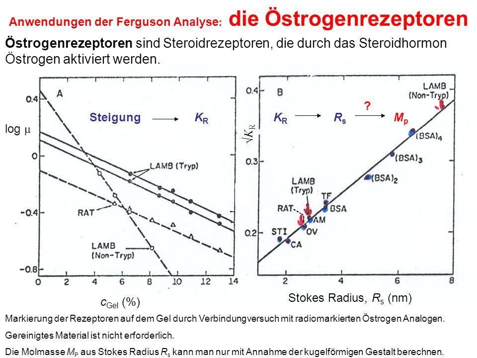 Anwendungen der Ferguson Analyse : die Östrogenrezeptoren Östrogenrezeptoren sind Steroidrezeptoren, die durch das Steroidhormon Östrogen aktiviert werden.