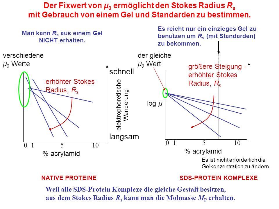 log μ 0 1 5 10 % acrylamid Es reicht nur ein einzieges Gel zu benutzen um R s (mit Standarden) zu bekommen.
