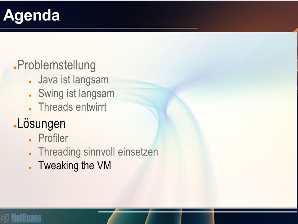 Agenda ● Problemstellung ● Java ist langsam ● Swing ist langsam ● Threads entwirrt ● Lösungen ● Profiler ● Threading sinnvoll einsetzen ● Tweaking the VM