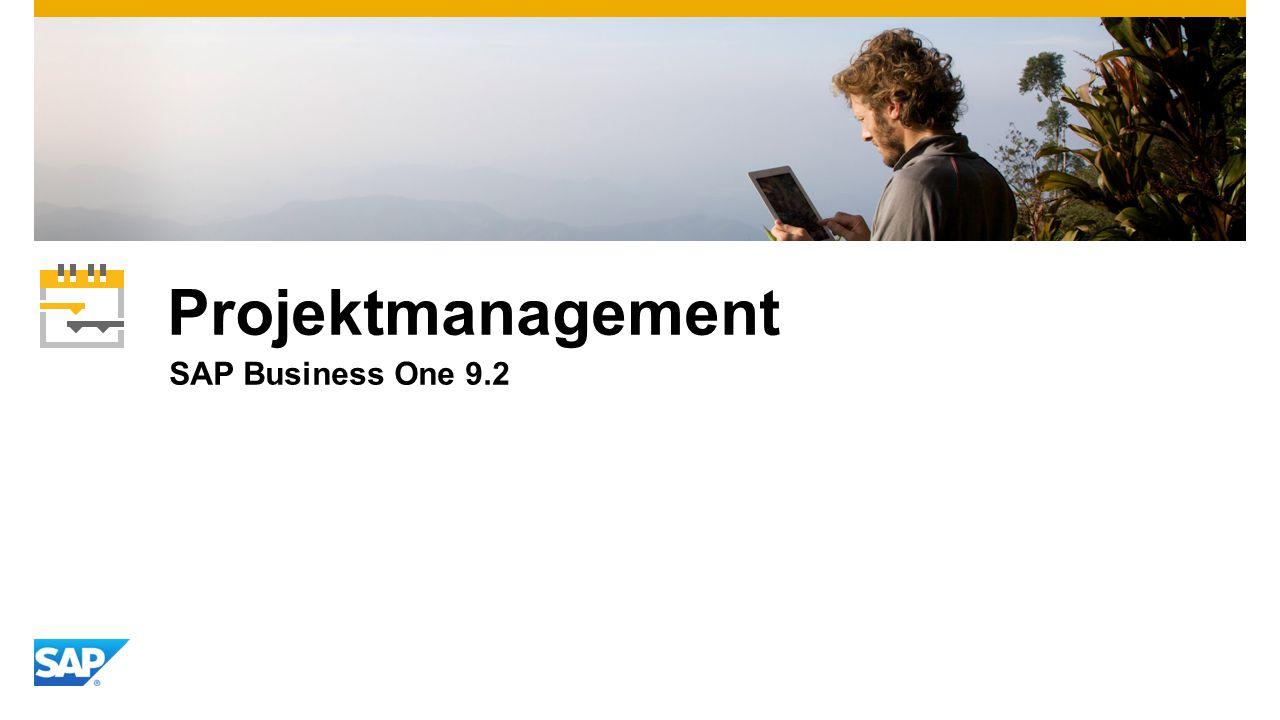 Projektmanagement SAP Business One 9.2