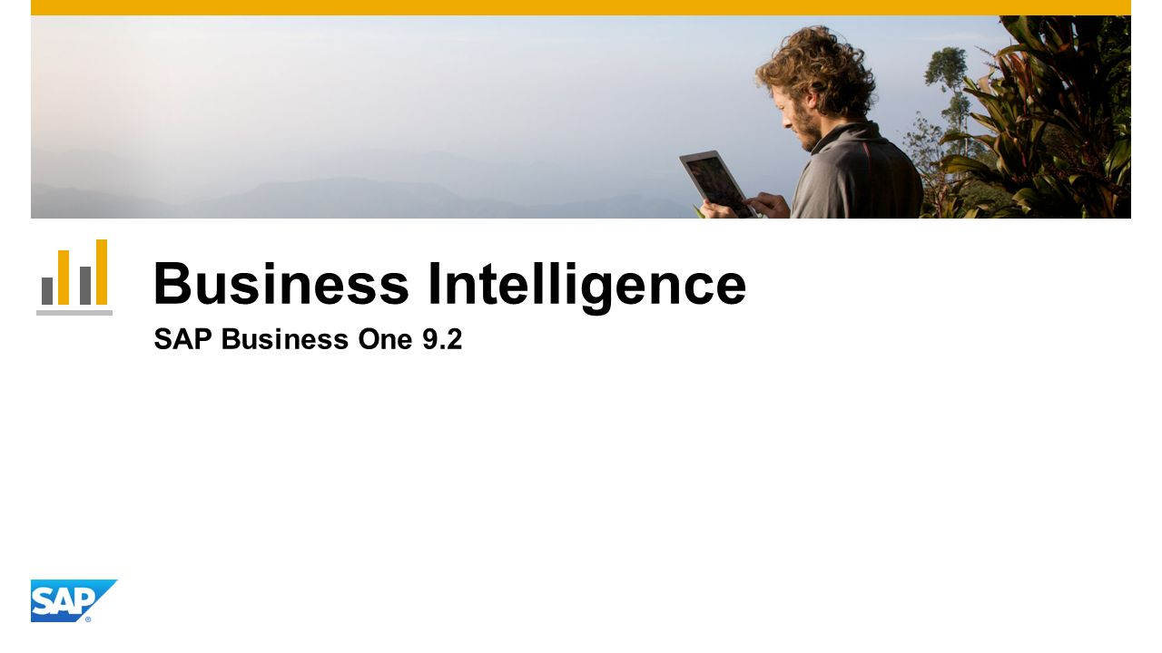 Business Intelligence SAP Business One 9.2