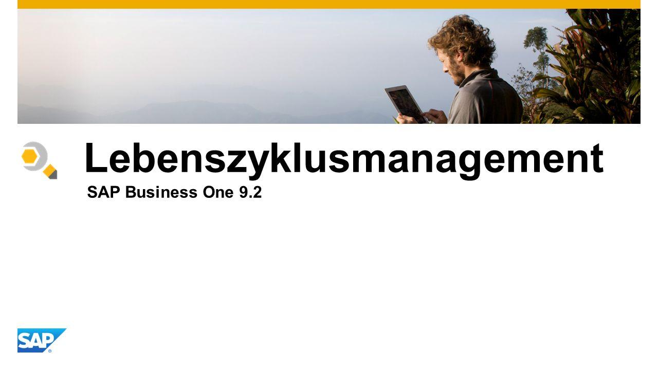 Lebenszyklusmanagement SAP Business One 9.2