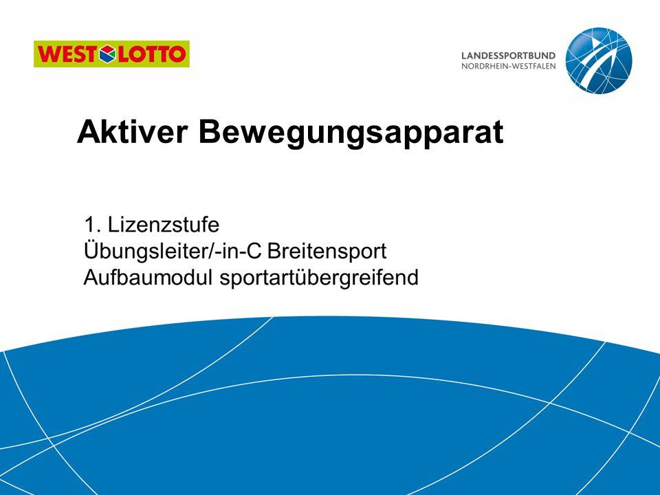 12   Übungsleiter/-in-C Breitensport Aufbau-Modul sportartübergreifend Konsequenzen für die Sportpraxis Erhöhte Disposition für Zerrungen und Muskelrisse.