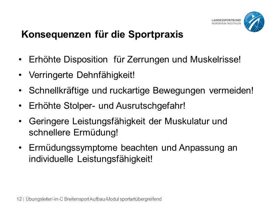 12 | Übungsleiter/-in-C Breitensport Aufbau-Modul sportartübergreifend Konsequenzen für die Sportpraxis Erhöhte Disposition für Zerrungen und Muskelrisse.