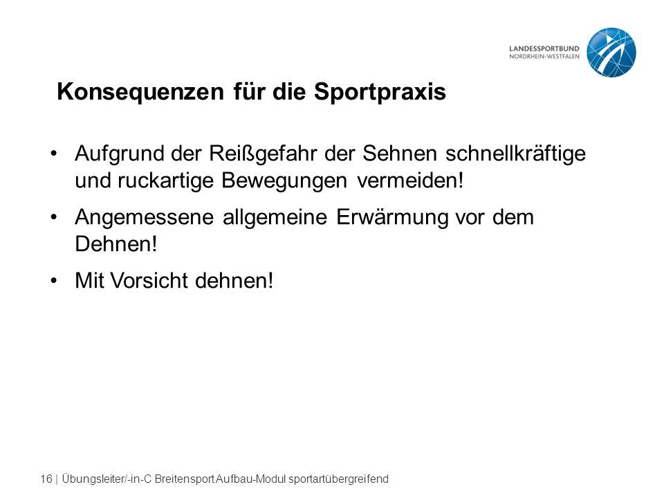 16 | Übungsleiter/-in-C Breitensport Aufbau-Modul sportartübergreifend Konsequenzen für die Sportpraxis Aufgrund der Reißgefahr der Sehnen schnellkräftige und ruckartige Bewegungen vermeiden.