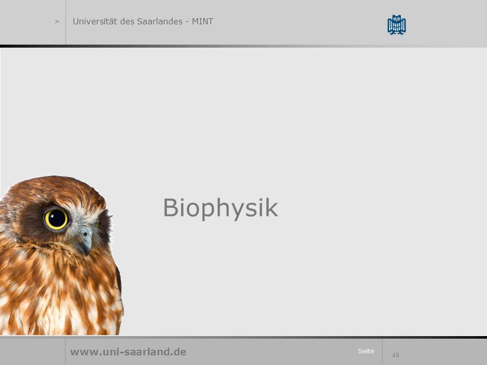 Seite 49 Biophysik www.uni-saarland.de >Universität des Saarlandes - MINT