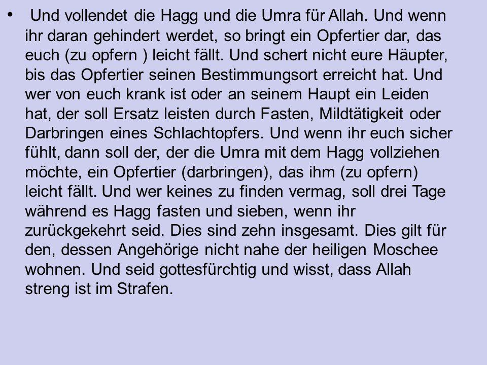 Und vollendet die Hagg und die Umra für Allah.