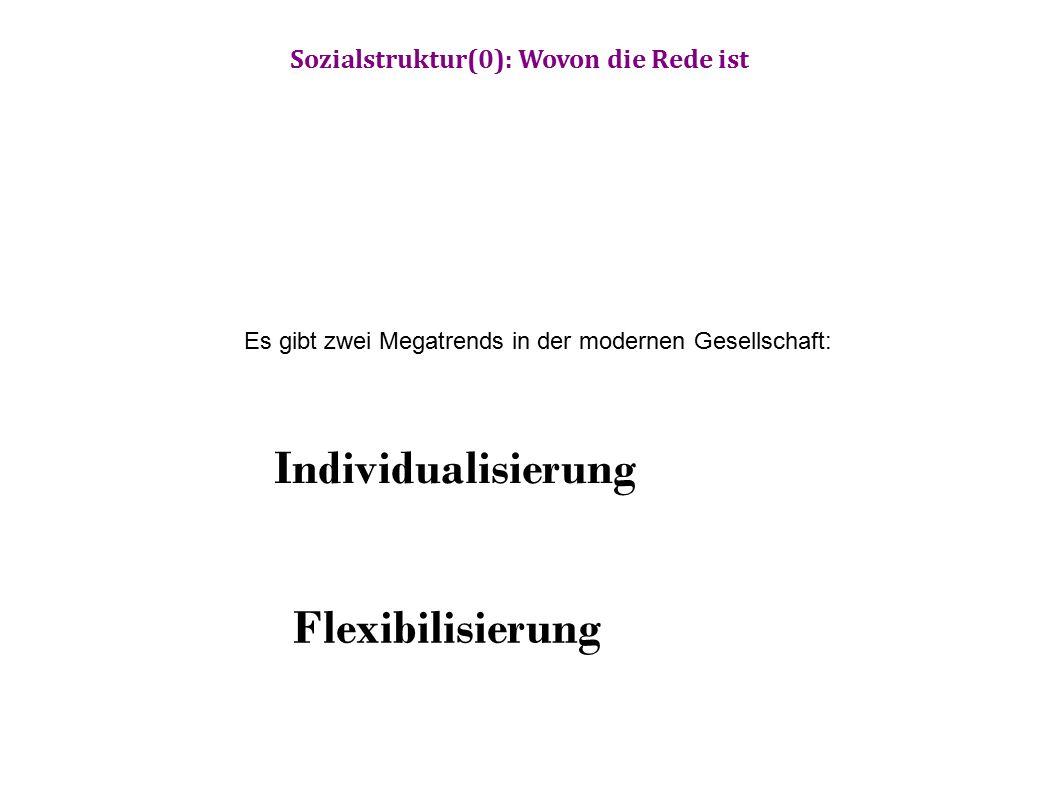 Es gibt zwei Megatrends in der modernen Gesellschaft: Individualisierung Flexibilisierung Sozialstruktur(0): Wovon die Rede ist