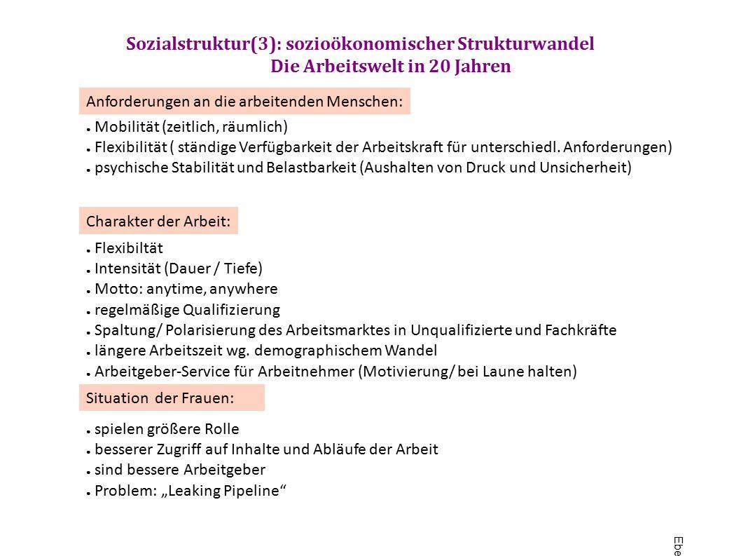 Sozialstruktur(3): sozioökonomischer Strukturwandel Die Arbeitswelt in 20 Jahren ● Mobilität (zeitlich, räumlich) ● Flexibilität ( ständige Verfügbarkeit der Arbeitskraft für unterschiedl.