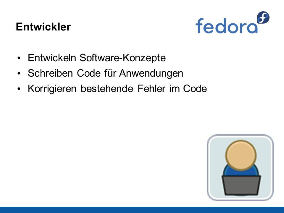 Entwickler Entwickeln Software-Konzepte Schreiben Code für Anwendungen Korrigieren bestehende Fehler im Code