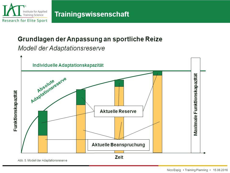 Trainingswissenschaft Nico Espig Training Planning 15.06.2016 Grundlagen der Anpassung an sportliche Reize Modell der Adaptationsreserve Abb.