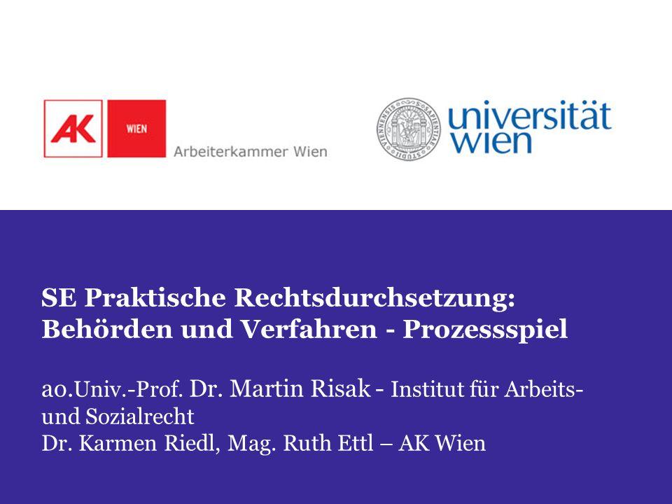 SE Praktische Rechtsdurchsetzung: Behörden und Verfahren - Prozessspiel ao.