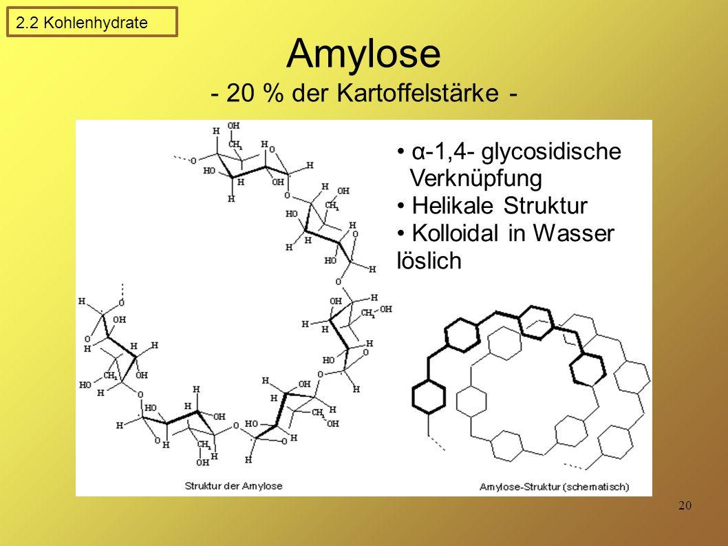 20 Amylose - 20 % der Kartoffelstärke - α-1,4- glycosidische Verknüpfung Helikale Struktur Kolloidal in Wasser löslich 2.2 Kohlenhydrate