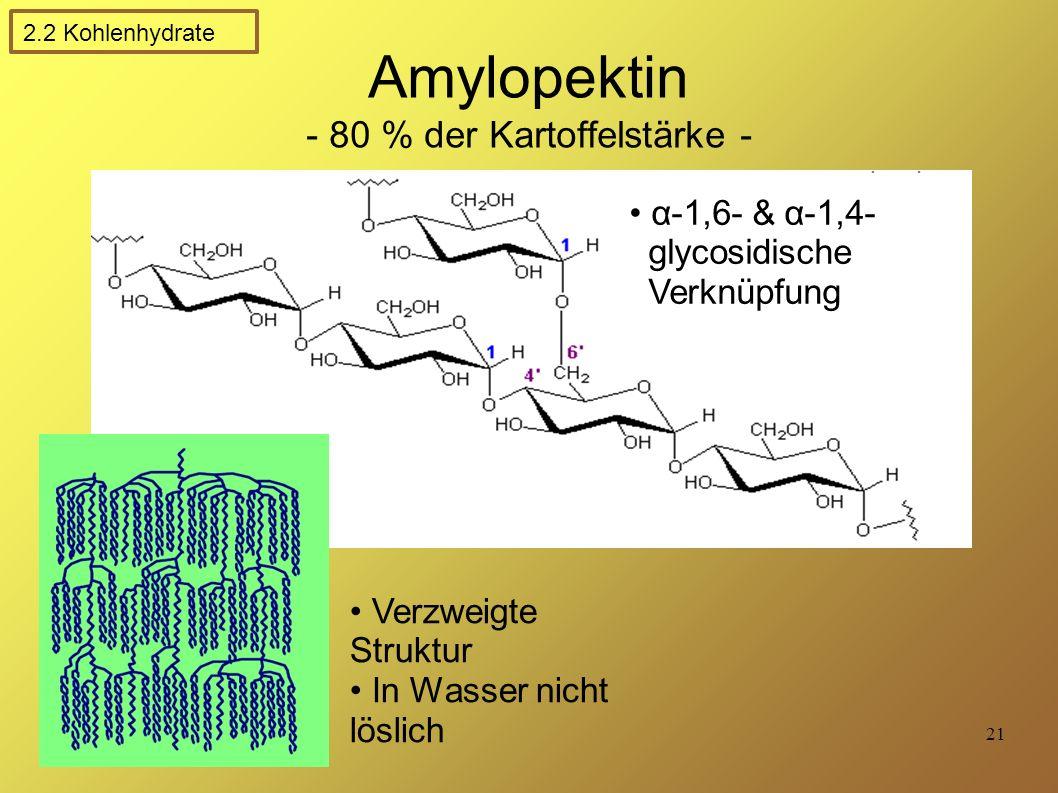 21 Amylopektin - 80 % der Kartoffelstärke - α-1,6- & α-1,4- glycosidische Verknüpfung Verzweigte Struktur In Wasser nicht löslich 2.2 Kohlenhydrate