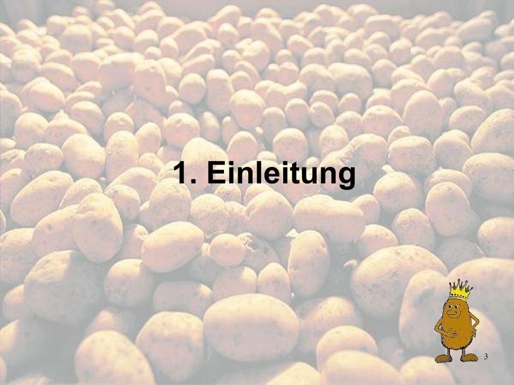 54 Allgemein gilt: Gestaltung des Unterrichts nach Leitthemen besseres Verständnis Thema Kartoffel bietet viele Einsatzmöglichkeiten fördert Verständnis zur: Ernährung Ökologische Bildung Umwelterziehung 4.