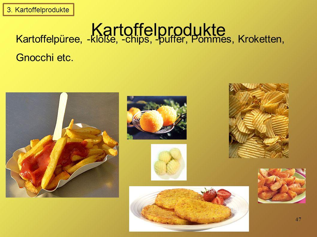 47 Kartoffelprodukte Kartoffelpüree, -klöße, -chips, -puffer, Pommes, Kroketten, Gnocchi etc.