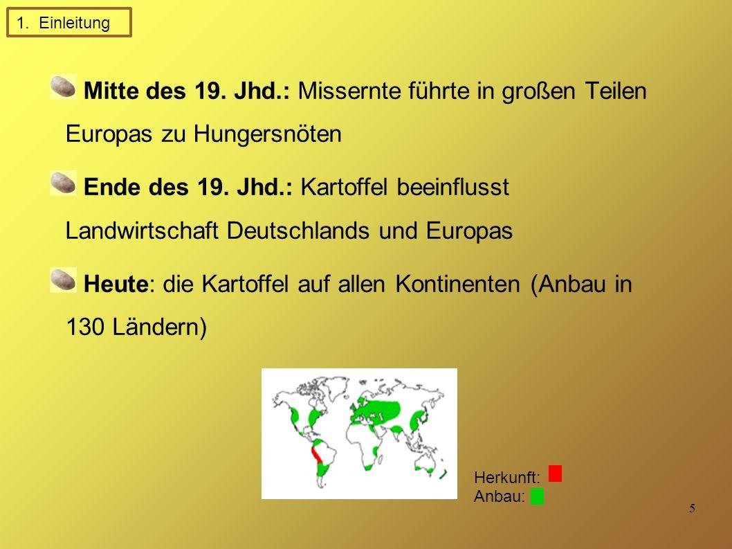 5 Mitte des 19.Jhd.: Missernte führte in großen Teilen Europas zu Hungersnöten Ende des 19.