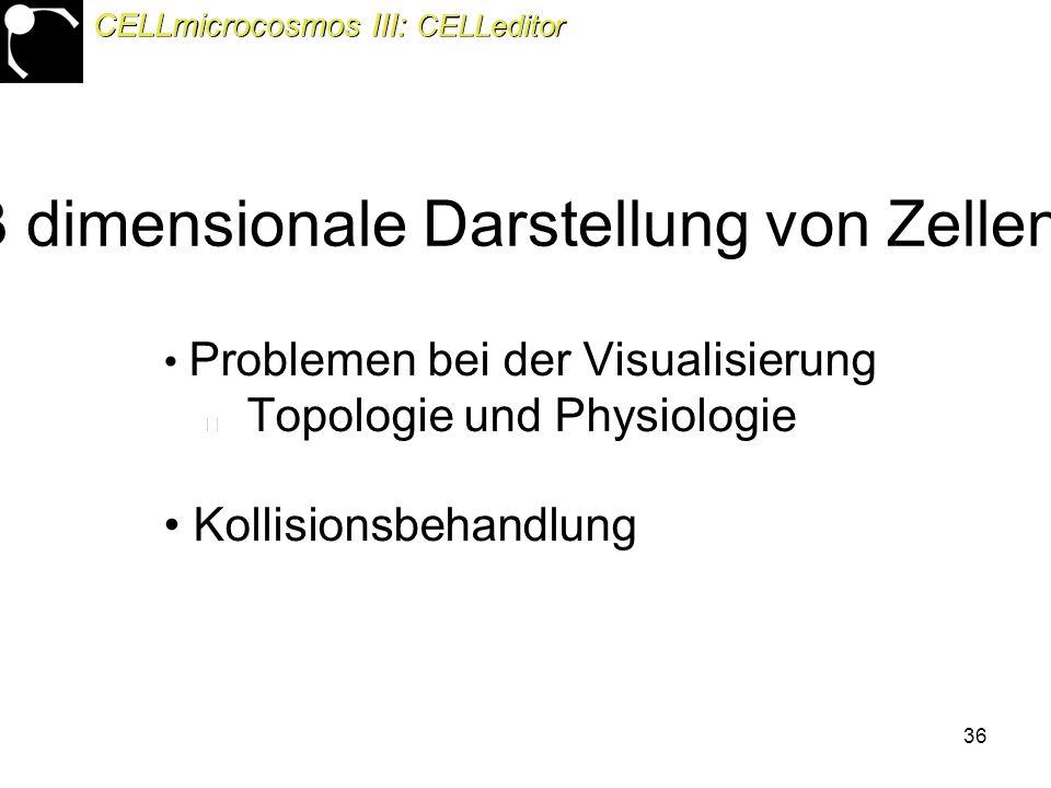 36 3 dimensionale Darstellung von Zellen Problemen bei der Visualisierung Topologie und Physiologie Kollisionsbehandlung CELLmicrocosmos III: CELLeditor
