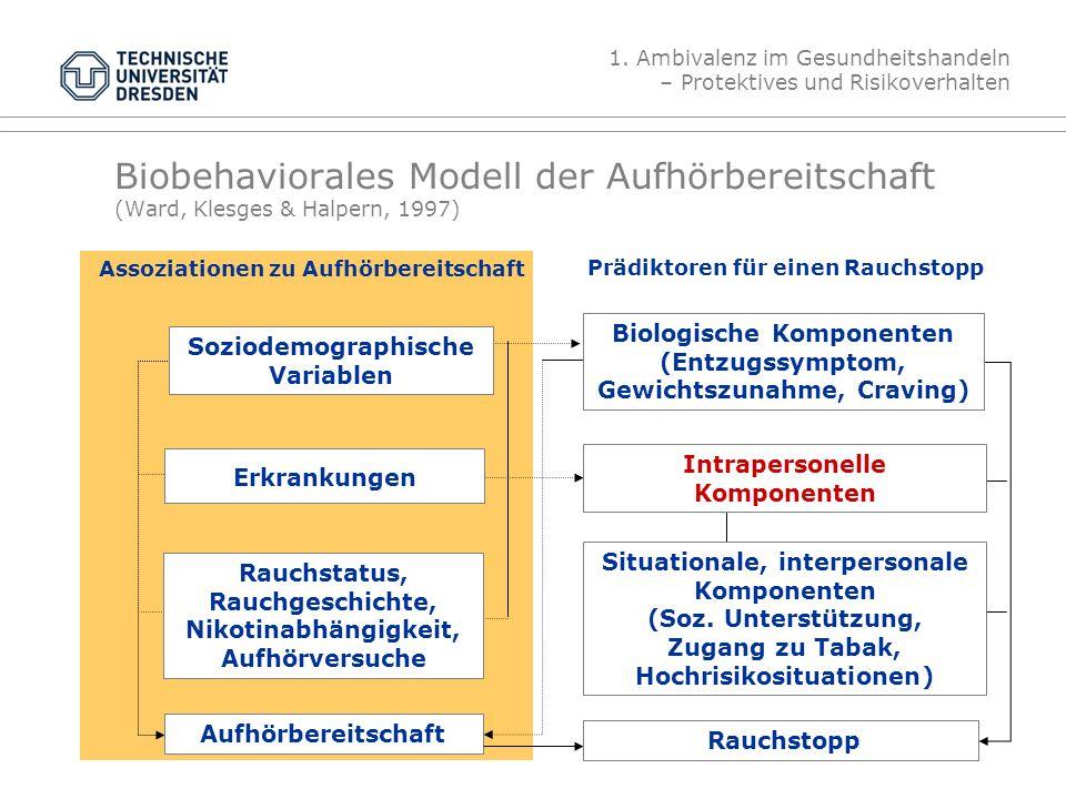 Folie 18 19.4.2012Gesundheitspsychologie, TU Dresden Biobehaviorales Modell der Aufhörbereitschaft (Ward, Klesges & Halpern, 1997) Aufhörbereitschaft Rauchstopp Situationale, interpersonale Komponenten (Soz.