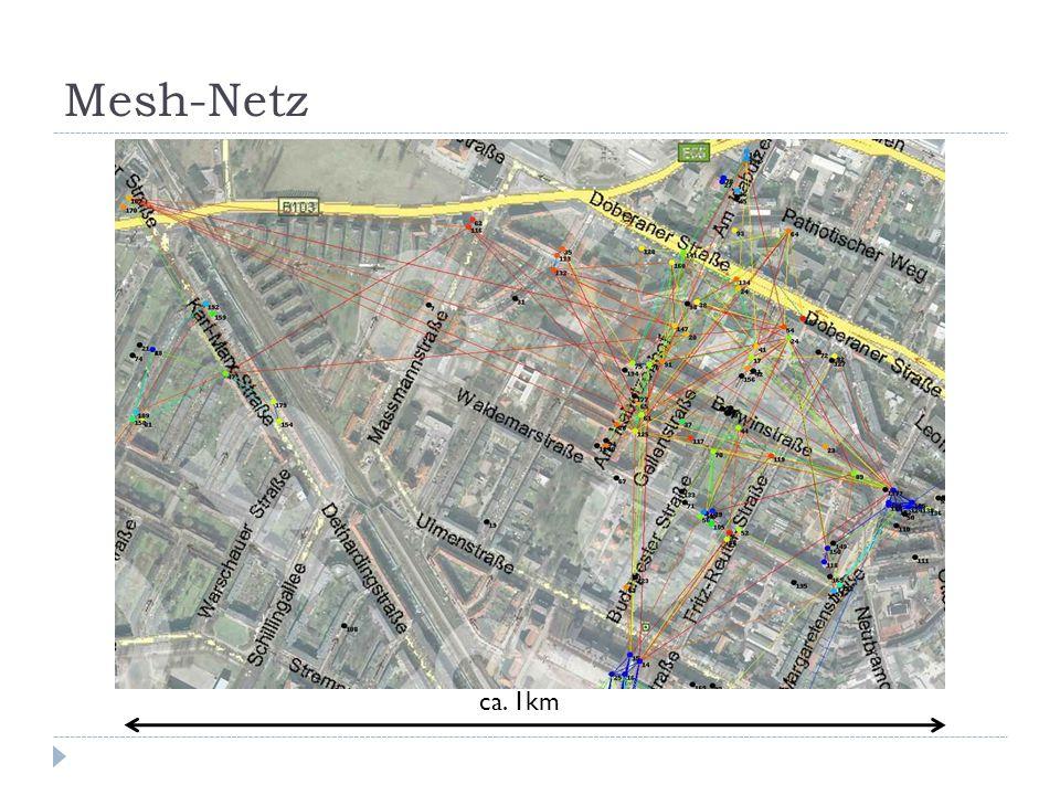 Mesh-Netz ca. 1km