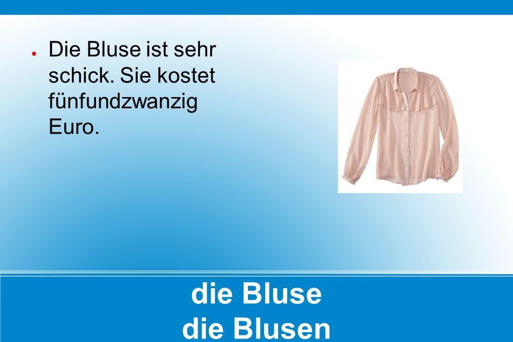 die Bluse die Blusen ● Die Bluse ist sehr schick. Sie kostet fünfundzwanzig Euro.