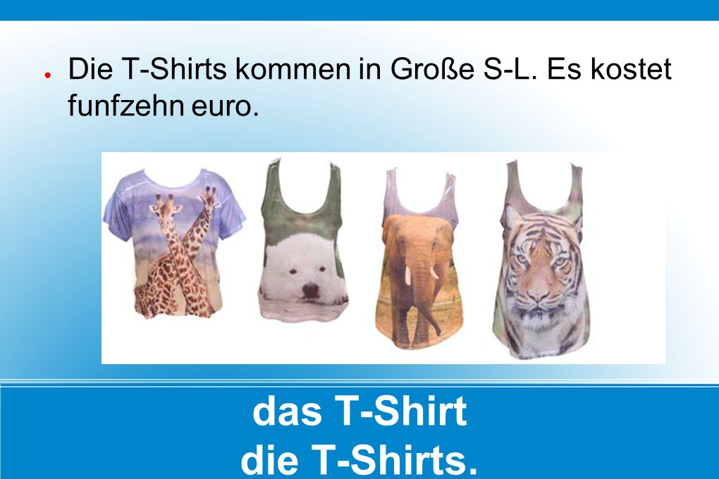 das T-Shirt die T-Shirts. ● Die T-Shirts kommen in Große S-L. Es kostet funfzehn euro.