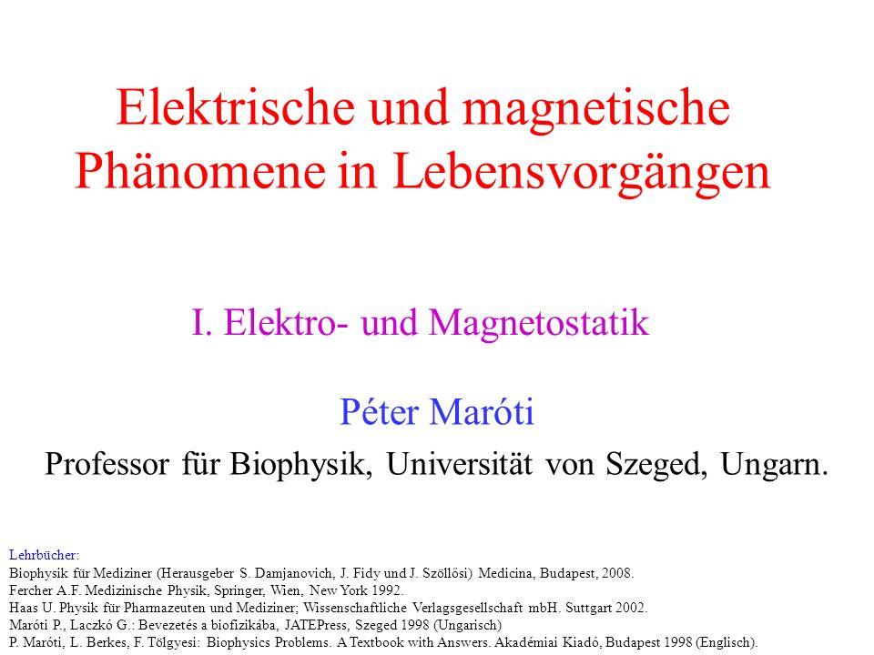 Biomagnetische Diagnostik Die Aktivierung von biologischen Zellen ist mit charakteristischen elektrischen Potentialen und Strömen verbunden.