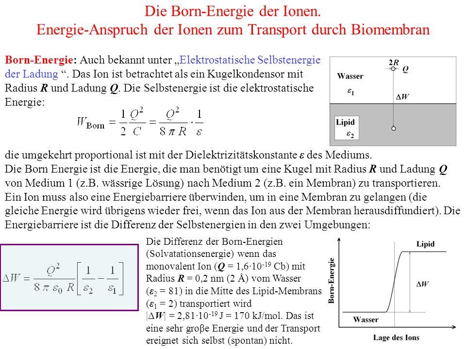 Die Born-Energie der Ionen.