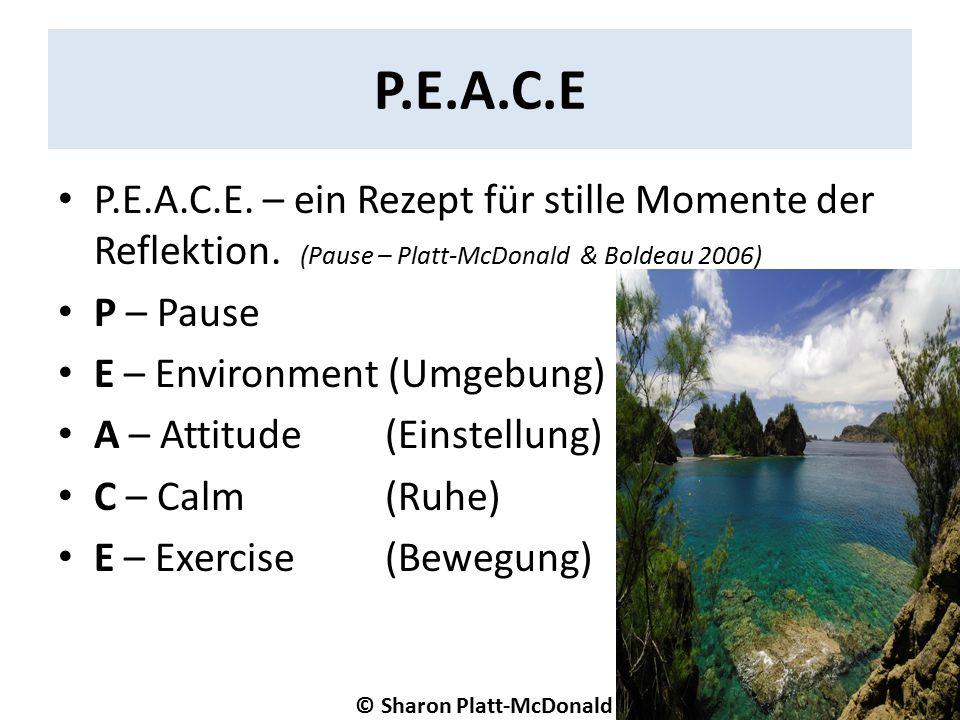 P.E.A.C.E P.E.A.C.E. – ein Rezept für stille Momente der Reflektion.